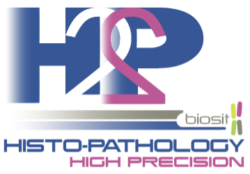 H2P2 – Histo pathology High precision logo